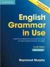 English Grammar in Use with Answers 4th edition